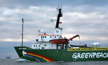 Dentro del gabinete de comunicación de Greenpeace